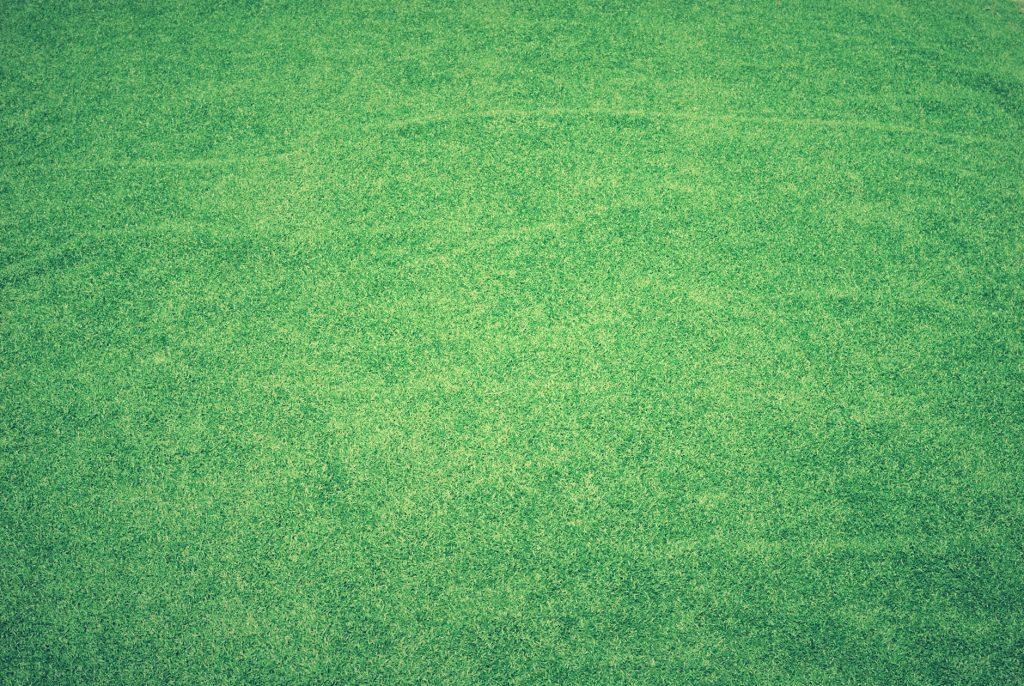 Corpus Christi Landscaping Lawn Care
